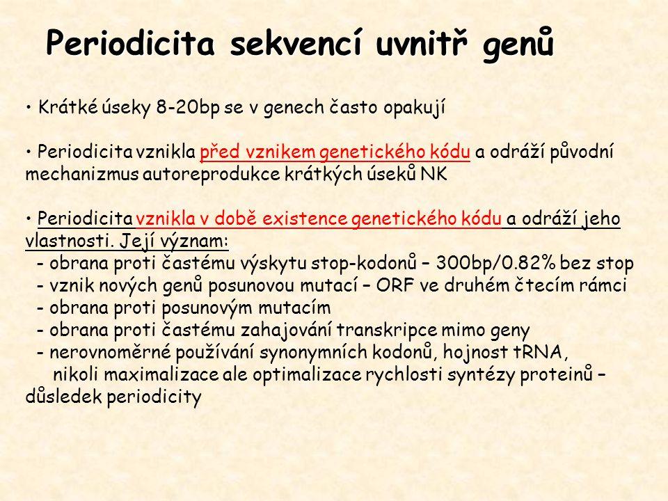 Periodicita sekvencí uvnitř genů Krátké úseky 8-20bp se v genech často opakují Periodicita vznikla před vznikem genetického kódu a odráží původní mech