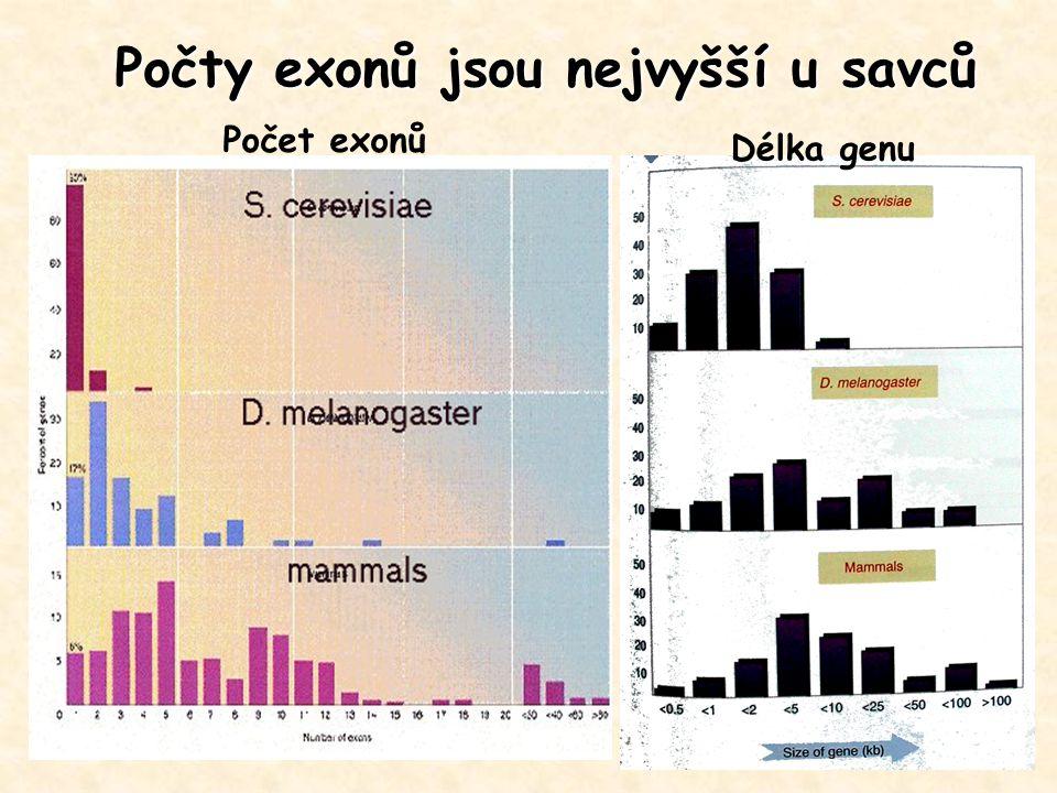 Počty exonů jsou nejvyšší u savců Počet exonů Délka genu
