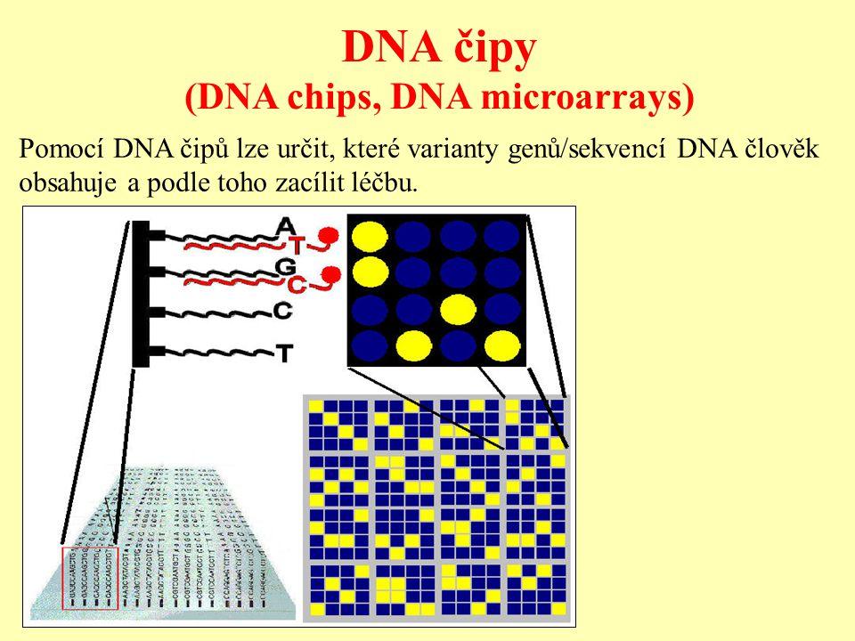 DNA čipy (DNA chips, DNA microarrays) Pomocí DNA čipů lze určit, které varianty genů/sekvencí DNA člověk obsahuje a podle toho zacílit léčbu.