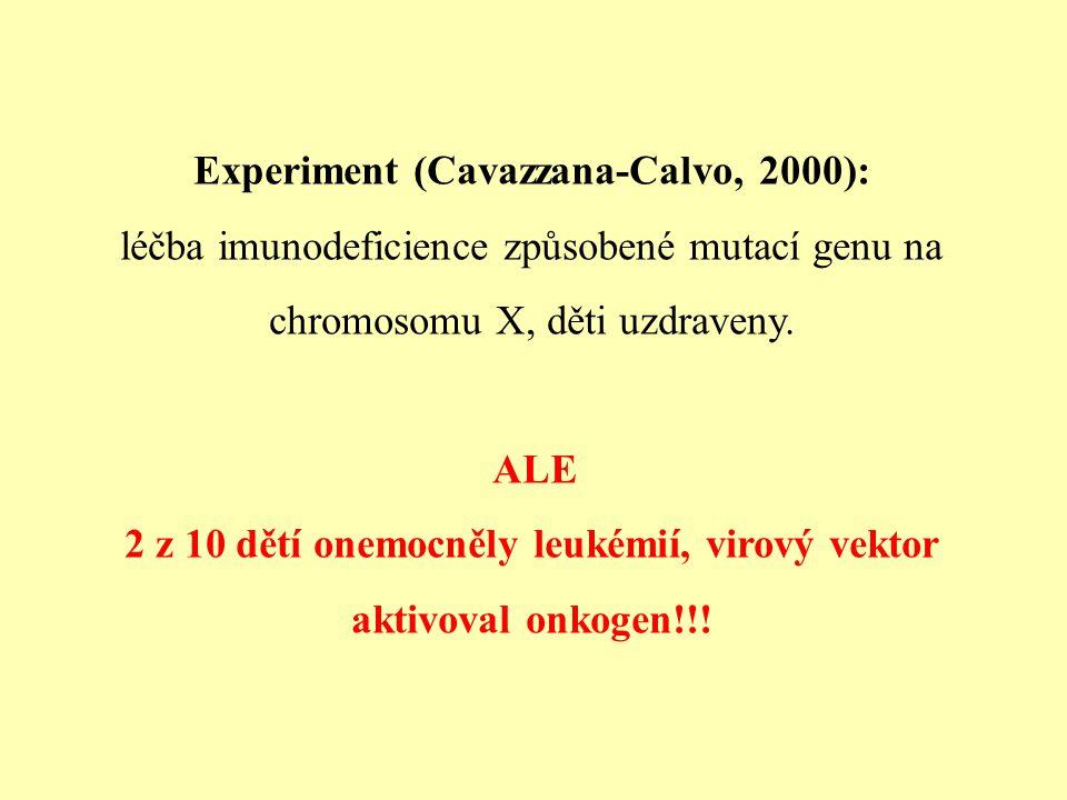 Experiment (Cavazzana-Calvo, 2000): léčba imunodeficience způsobené mutací genu na chromosomu X, děti uzdraveny. ALE 2 z 10 dětí onemocněly leukémií,