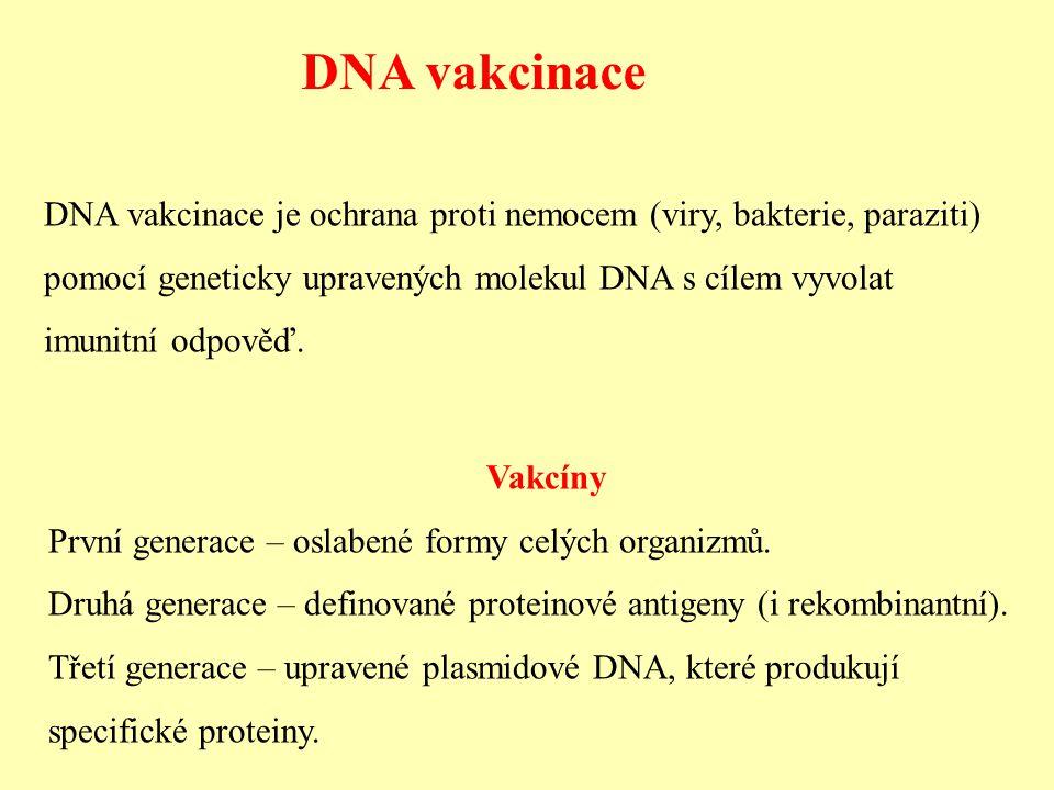 DNA vakcinace DNA vakcinace je ochrana proti nemocem (viry, bakterie, paraziti) pomocí geneticky upravených molekul DNA s cílem vyvolat imunitní odpov