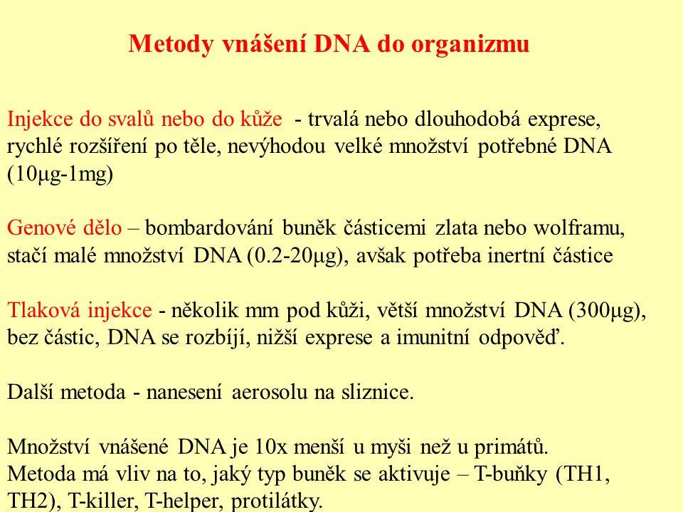 Metody vnášení DNA do organizmu Injekce do svalů nebo do kůže - trvalá nebo dlouhodobá exprese, rychlé rozšíření po těle, nevýhodou velké množství potřebné DNA (10μg-1mg) Genové dělo – bombardování buněk částicemi zlata nebo wolframu, stačí malé množství DNA (0.2-20μg), avšak potřeba inertní částice Tlaková injekce - několik mm pod kůži, větší množství DNA (300μg), bez částic, DNA se rozbíjí, nižší exprese a imunitní odpověď.