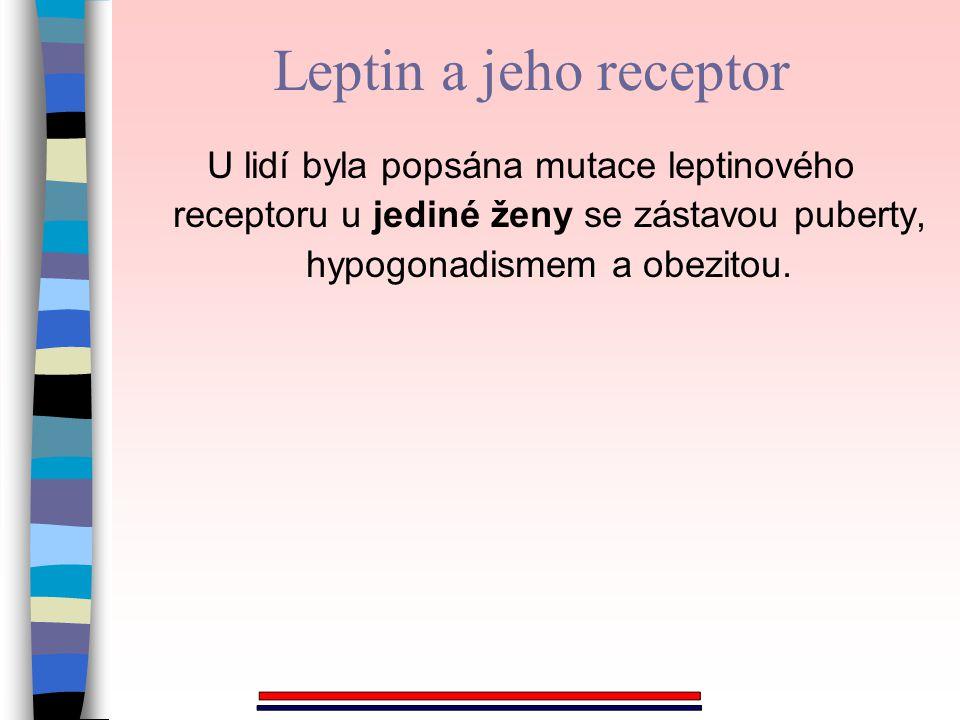 U lidí byla popsána mutace leptinového receptoru u jediné ženy se zástavou puberty, hypogonadismem a obezitou. Leptin a jeho receptor