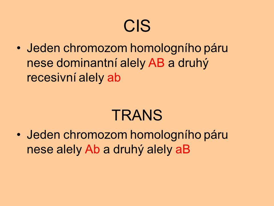 CIS Jeden chromozom homologního páru nese dominantní alely AB a druhý recesivní alely ab TRANS Jeden chromozom homologního páru nese alely Ab a druhý alely aB