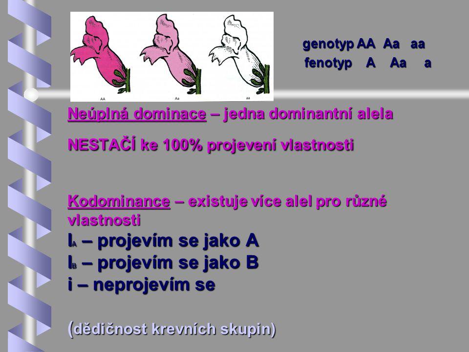 Neúplná dominace – jedna dominantní alela NESTAČÍ ke 100% projevení vlastnosti Kodominance – existuje více alel pro různé vlastnosti I A – projevím se