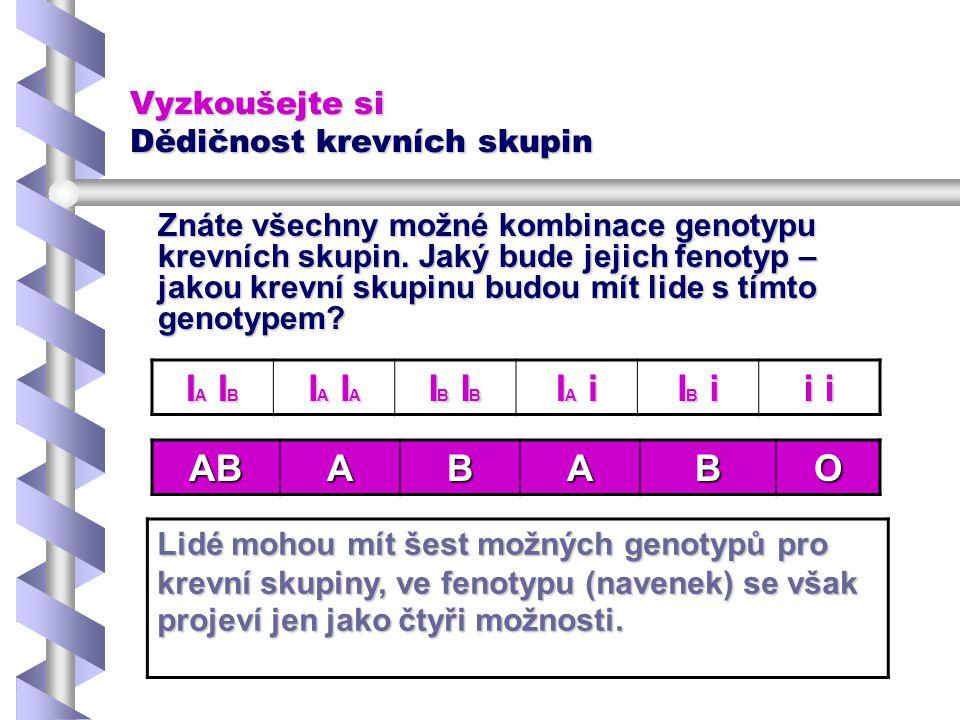 Vyzkoušejte si Dědičnost krevních skupin Znáte všechny možné kombinace genotypu krevních skupin. Jaký bude jejich fenotyp – jakou krevní skupinu budou