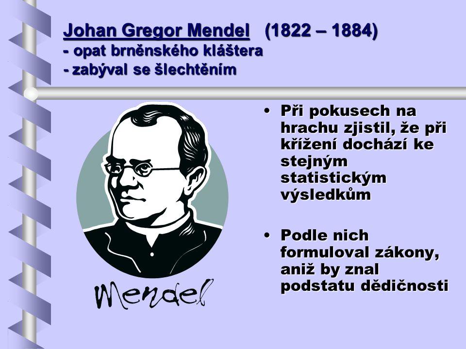 Johan Gregor Mendel (1822 – 1884) - opat brněnského kláštera - zabýval se šlechtěním Při pokusech na hrachu zjistil, že při křížení dochází ke stejným
