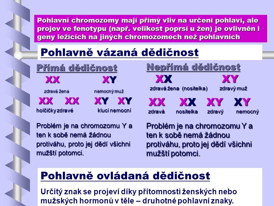 Pohlavní chromozomy mají přímý vliv na určení pohlaví, ale projev ve fenotypu (např. velikost poprsí u žen) je ovlivněn i geny ležících na jiných chro
