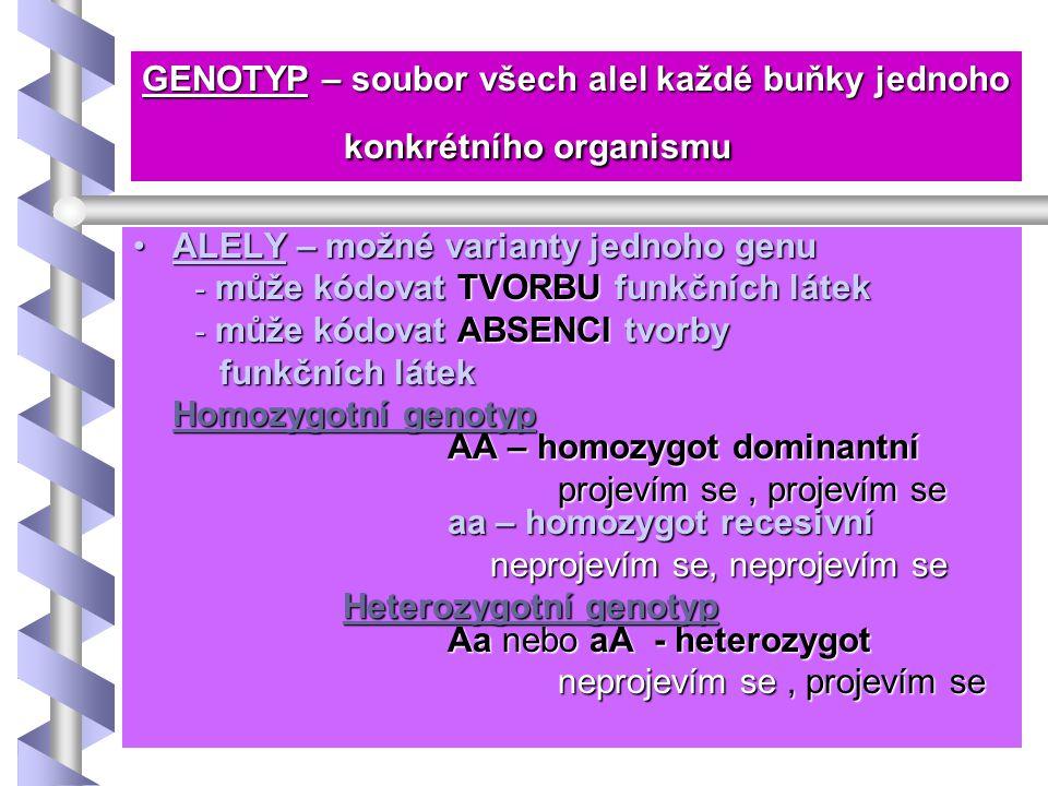 GENOTYP – soubor všech alel každé buňky jednoho konkrétního organismu ALELY – možné varianty jednoho genuALELY – možné varianty jednoho genu - může kó