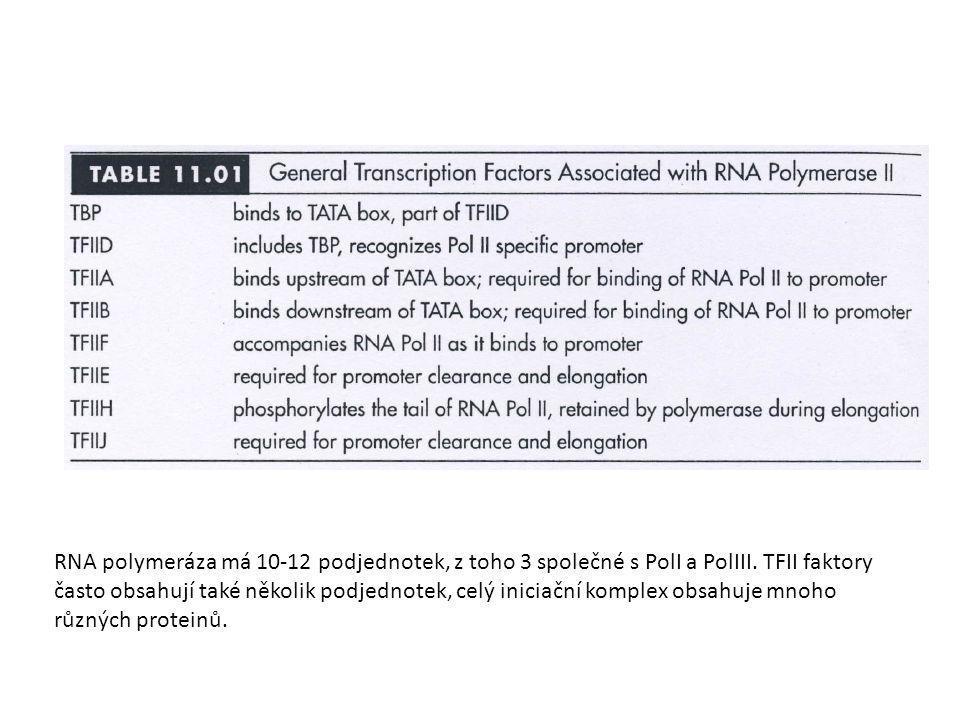 RNA polymeráza má 10-12 podjednotek, z toho 3 společné s PolI a PolIII. TFII faktory často obsahují také několik podjednotek, celý iniciační komplex o