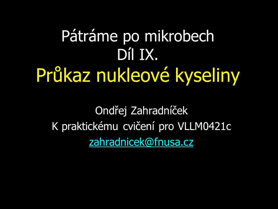 Pátráme po mikrobech Díl IX. Průkaz nukleové kyseliny Ondřej Zahradníček K praktickému cvičení pro VLLM0421c zahradnicek@fnusa.cz