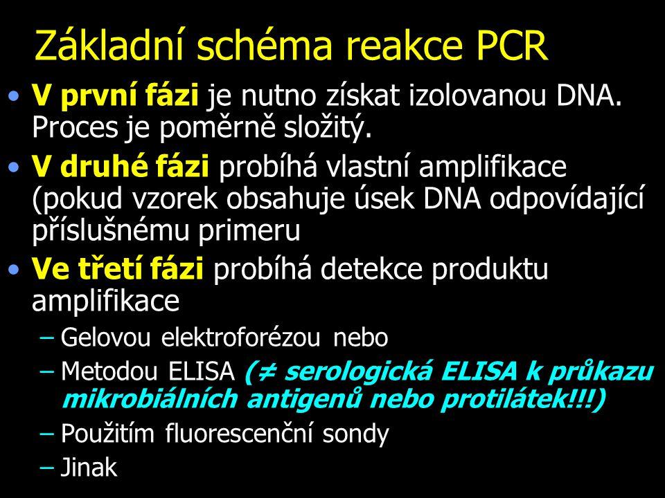 Základní schéma reakce PCR V první fázi je nutno získat izolovanou DNA. Proces je poměrně složitý. V druhé fázi probíhá vlastní amplifikace (pokud vzo