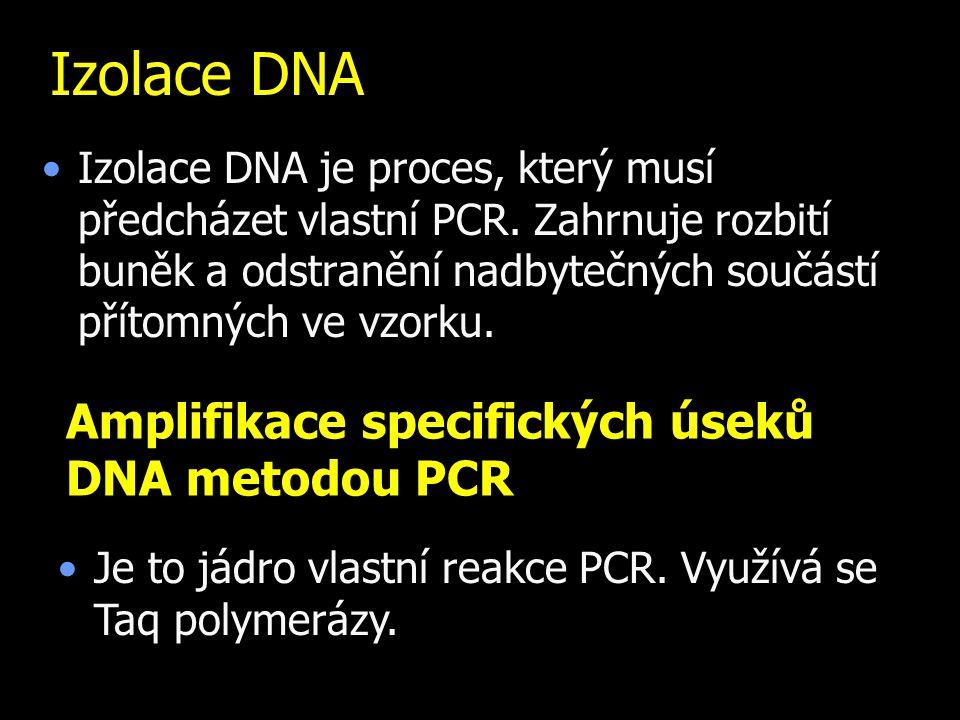 Izolace DNA Izolace DNA je proces, který musí předcházet vlastní PCR. Zahrnuje rozbití buněk a odstranění nadbytečných součástí přítomných ve vzorku.