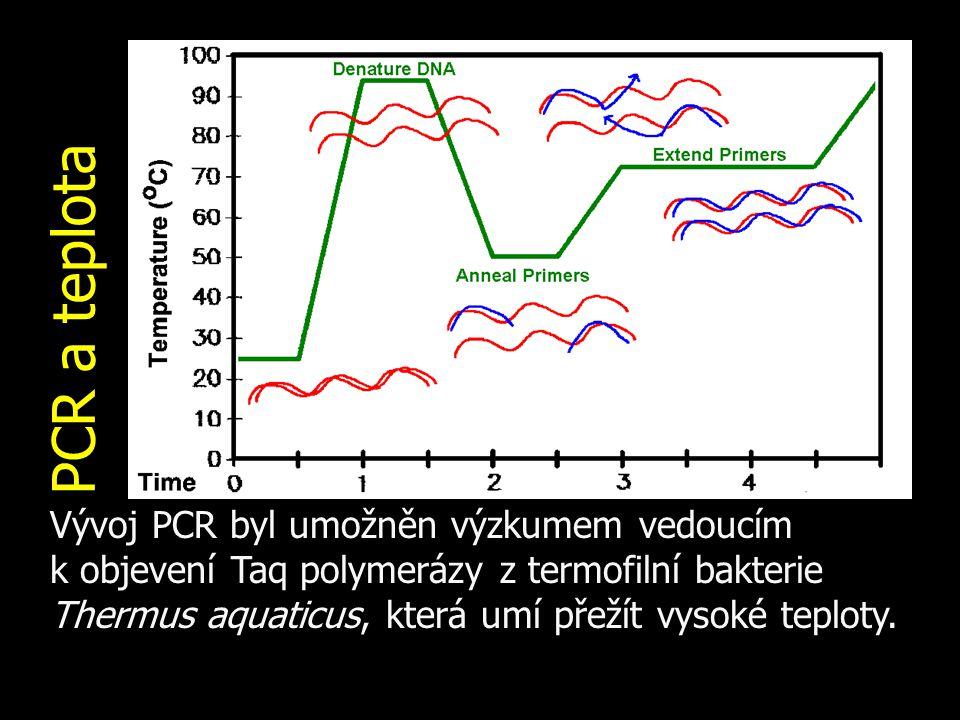 PCR a teplota Vývoj PCR byl umožněn výzkumem vedoucím k objevení Taq polymerázy z termofilní bakterie Thermus aquaticus, která umí přežít vysoké teplo