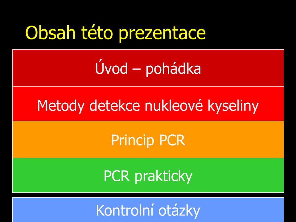 Obsah této prezentace Metody detekce nukleové kyseliny Princip PCR PCR prakticky Kontrolní otázky Úvod – pohádka