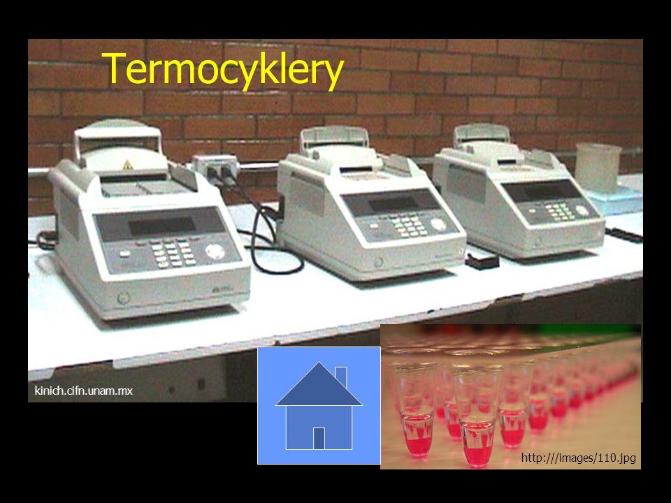 Termocyklery kinich.cifn.unam.mx http:///images/110.jpg