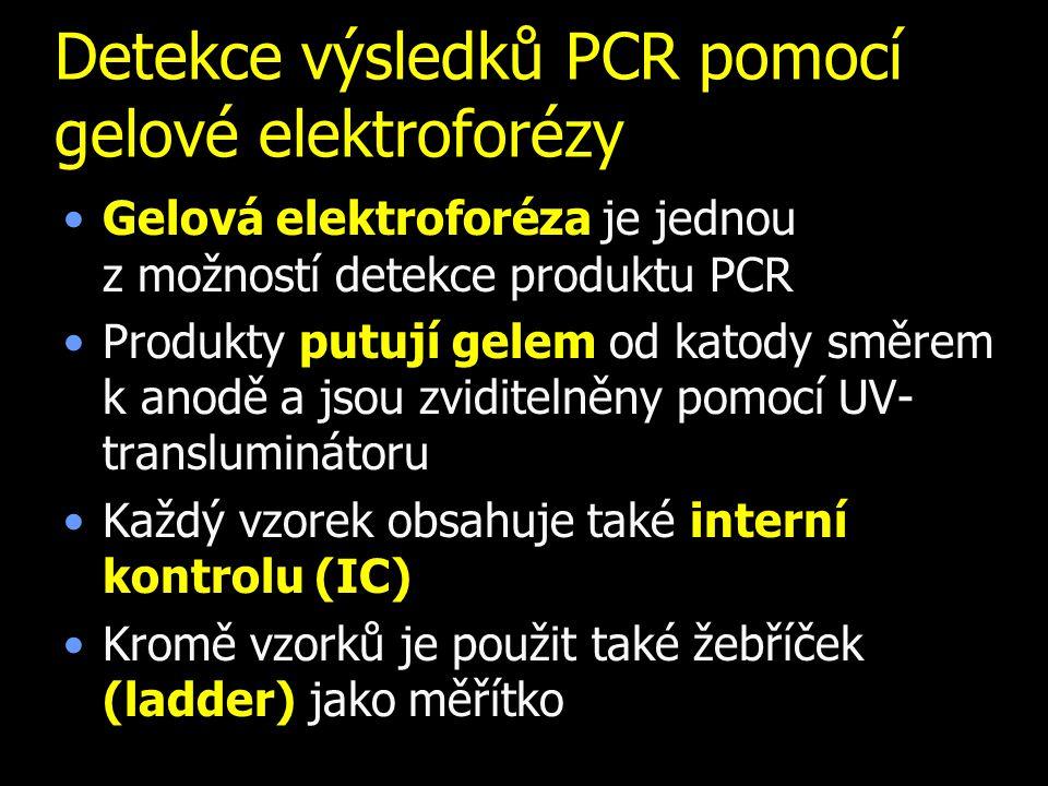 Detekce výsledků PCR pomocí gelové elektroforézy Gelová elektroforéza je jednou z.možností detekce produktu PCR Produkty putují gelem od katody směrem k anodě a jsou zviditelněny pomocí UV- transluminátoru Každý vzorek obsahuje také interní kontrolu (IC) Kromě vzorků je použit také žebříček (ladder) jako měřítko