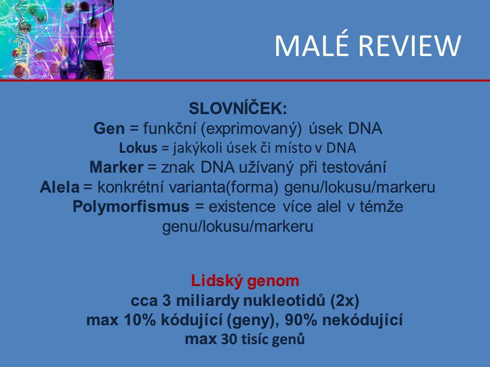 non-LTR retrotranspozony autonomní retrotranspozóny cca 21% lidského genomu rozeznáváme různé rodiny – LINE1 (L1), LINE 2, LINE 3 … LINE1 jsou aktivní (17% genomu) – 500 000 kopií, z toho cca 100 stále schopno transpozice aktivní element L1 je dlouhý cca 6 kb obsahuje ORF1 (?) a ORF2 (reverzní transkriptáza) LINE = long interspearsed nuclear elements