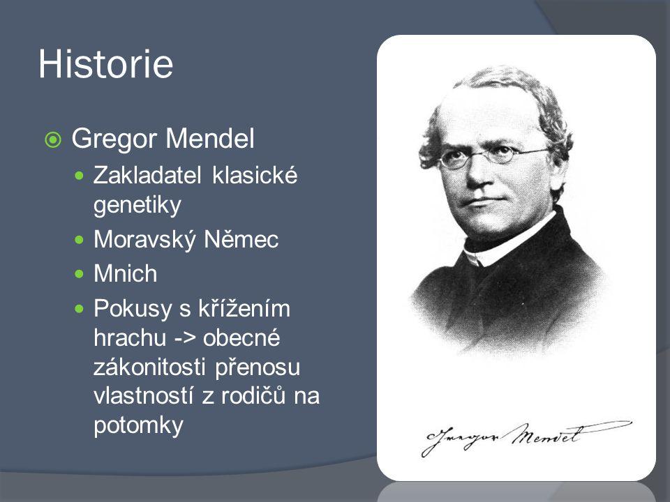 Historie  Gregor Mendel Zakladatel klasické genetiky Moravský Němec Mnich Pokusy s křížením hrachu -> obecné zákonitosti přenosu vlastností z rodičů