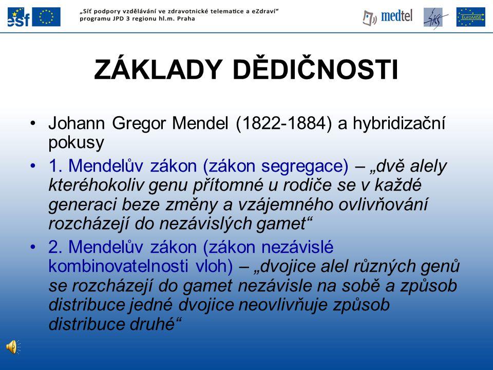"""ZÁKLADY DĚDIČNOSTI Johann Gregor Mendel (1822-1884) a hybridizační pokusy 1. Mendelův zákon (zákon segregace) – """"dvě alely kteréhokoliv genu přítomné"""