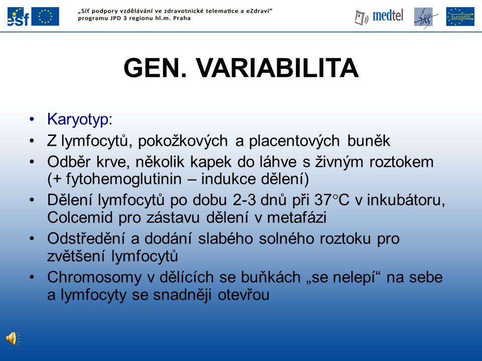 GEN. VARIABILITA Karyotyp: Z lymfocytů, pokožkových a placentových buněk Odběr krve, několik kapek do láhve s živným roztokem (+ fytohemoglutinin – in