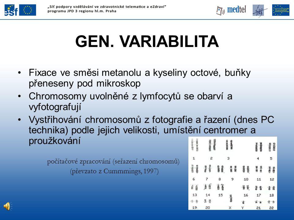 GEN. VARIABILITA Fixace ve směsi metanolu a kyseliny octové, buňky přeneseny pod mikroskop Chromosomy uvolněné z lymfocytů se obarví a vyfotografují V