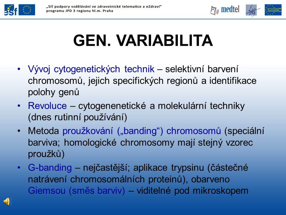 GEN. VARIABILITA Vývoj cytogenetických technik – selektivní barvení chromosomů, jejich specifických regionů a identifikace polohy genů Revoluce – cyto