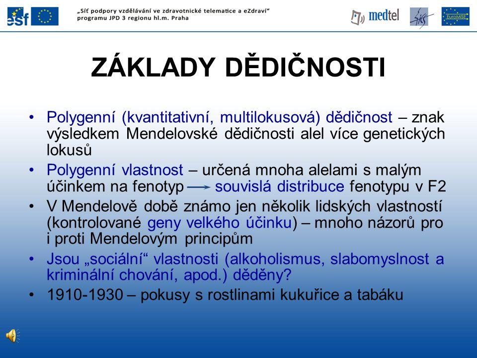 ZÁKLADY DĚDIČNOSTI Polygenní (kvantitativní, multilokusová) dědičnost – znak výsledkem Mendelovské dědičnosti alel více genetických lokusů Polygenní v