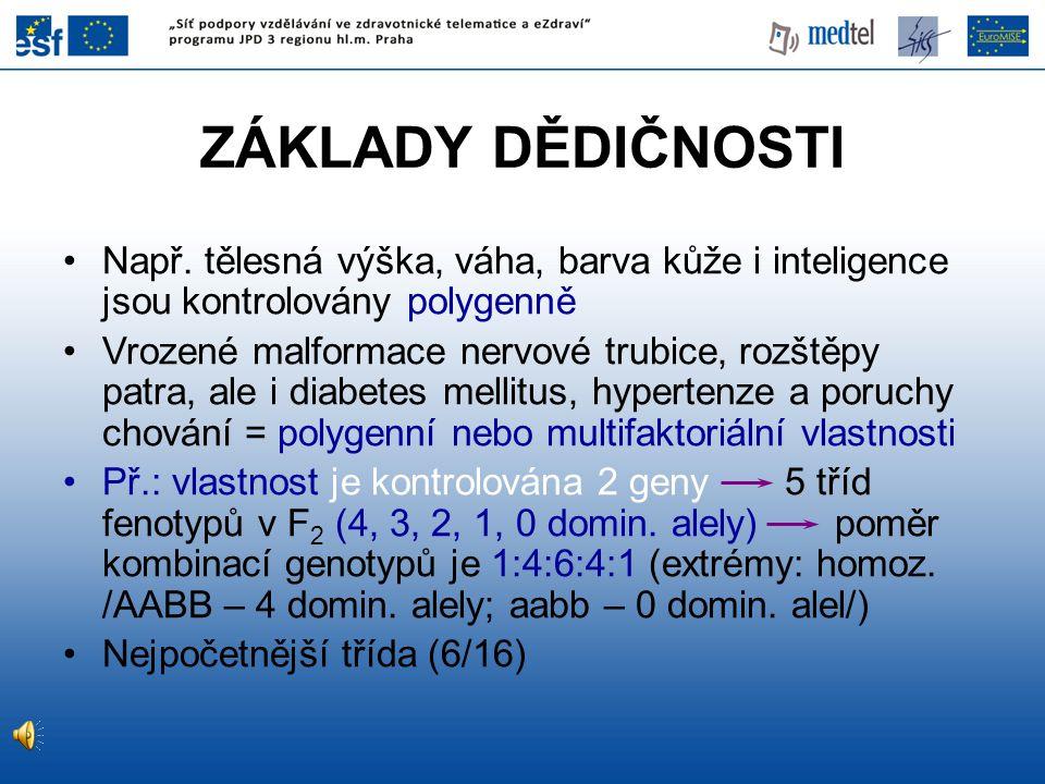 ZÁKLADY DĚDIČNOSTI Např. tělesná výška, váha, barva kůže i inteligence jsou kontrolovány polygenně Vrozené malformace nervové trubice, rozštěpy patra,