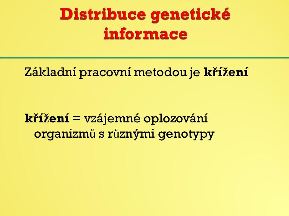 Základní pracovní metodou je k ř í ž ení k ř í ž ení = vzájemné oplozování organizm ů s r ů znými genotypy