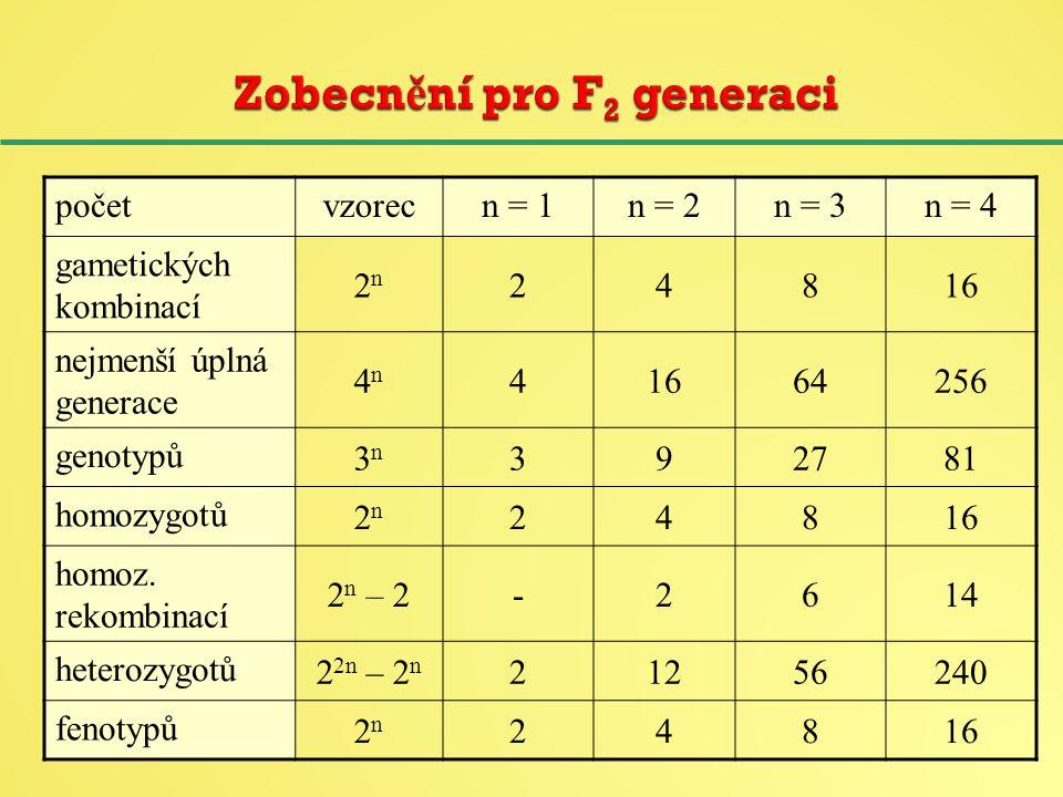 početvzorecn = 1n = 2n = 3n = 4 gametických kombinací 2n2n 24816 nejmenší úplná generace 4n4n 41664256 genotypů 3n3n 392781 homozygotů 2n2n 24816 homoz.