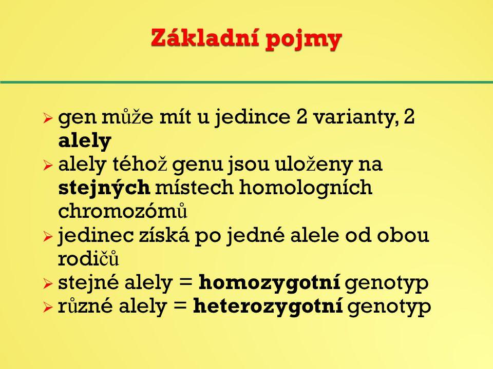 homozygot = jedinec, který má ob ě alely sledovaného genu stejné, tj.