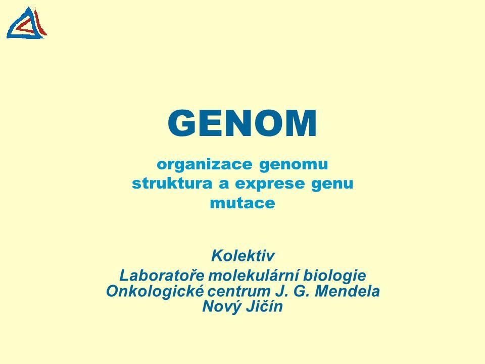 FAKTA Nukleární DNA je lokalizována v jádře buněk Haploidní genom obsahuje 3x10 9 bp Počet předpokládaných genů 20.000 - 30.000 (50.000 – 100.000) Kódující sekvence 2 - 3 % Genetický kód je univerzální Geny jsou lokalizovány na chromosomech lineárně Geny mají exon/intronovou strukturu Diploidní lidský genom obsahuje 46 chromozomů (2x22 autosomů a 2 pohlavní chromozomy - X a Y) (žena 46 XX, muž 46 XY)