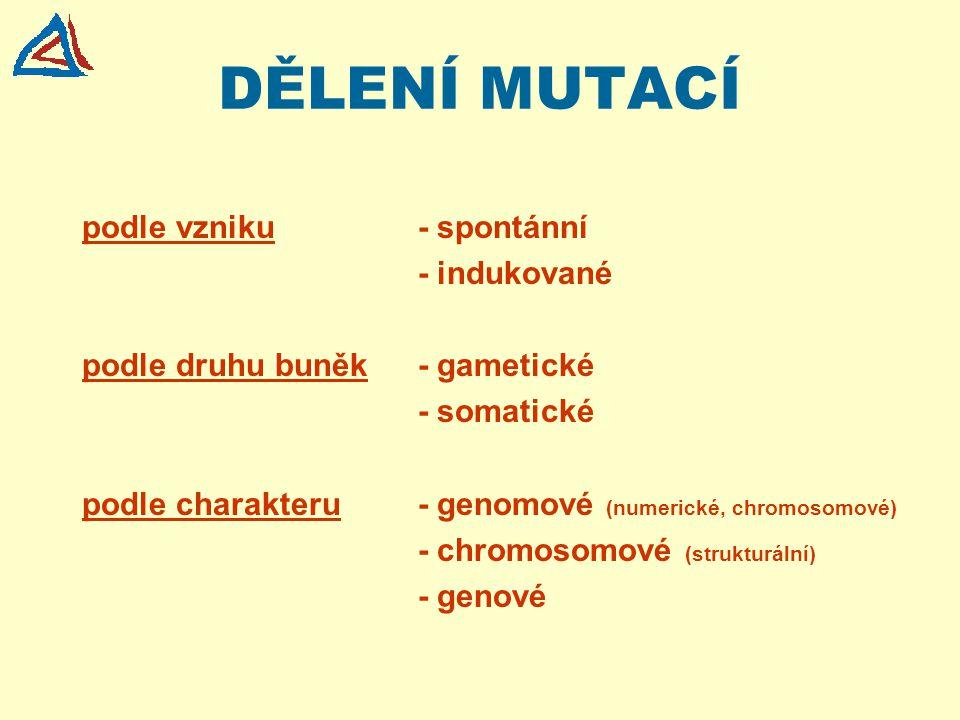 DĚLENÍ MUTACÍ podle vzniku- spontánní - indukované podle druhu buněk- gametické - somatické podle charakteru- genomové (numerické, chromosomové) - chr