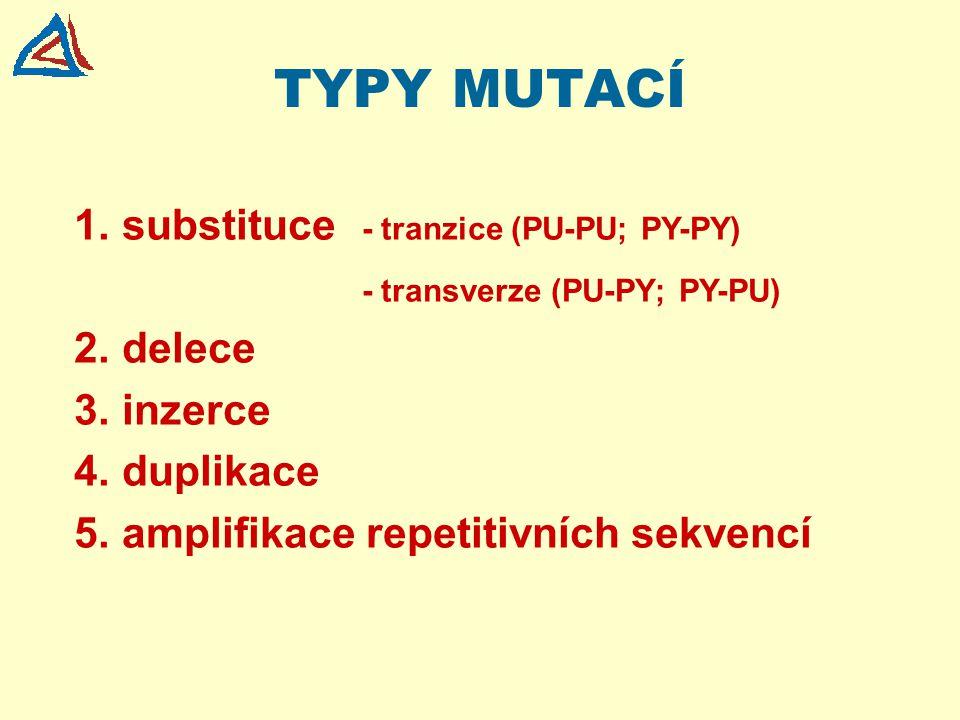 TYPY MUTACÍ 1.substituce - tranzice (PU-PU; PY-PY) - transverze (PU-PY; PY-PU) 2.delece 3.inzerce 4.duplikace 5.amplifikace repetitivních sekvencí