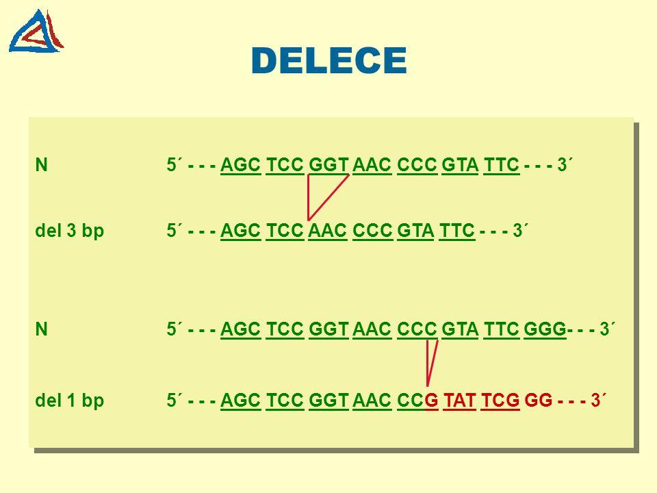 DELECE N5´ - - - AGC TCC GGT AAC CCC GTA TTC - - - 3´ del 3 bp5´ - - - AGC TCC AAC CCC GTA TTC - - - 3´ N5´ - - - AGC TCC GGT AAC CCC GTA TTC GGG- - -