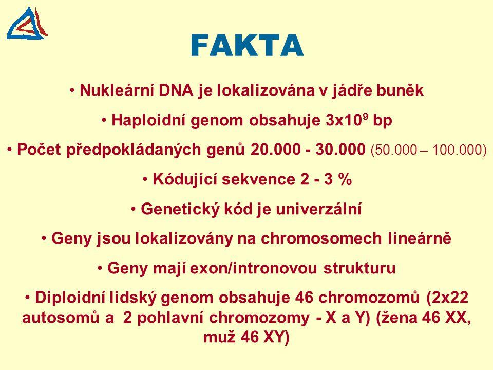 FAKTA Nukleární DNA je lokalizována v jádře buněk Haploidní genom obsahuje 3x10 9 bp Počet předpokládaných genů 20.000 - 30.000 (50.000 – 100.000) Kód