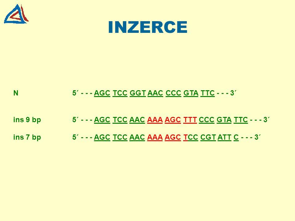INZERCE N5´ - - - AGC TCC GGT AAC CCC GTA TTC - - - 3´ ins 9 bp5´ - - - AGC TCC AAC AAA AGC TTT CCC GTA TTC - - - 3´ ins 7 bp5´ - - - AGC TCC AAC AAA