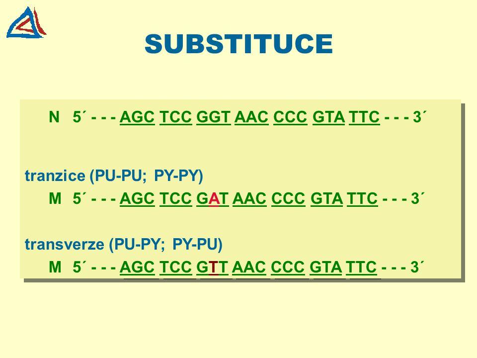 SUBSTITUCE N5´ - - - AGC TCC GGT AAC CCC GTA TTC - - - 3´ tranzice (PU-PU; PY-PY) M5´ - - - AGC TCC GAT AAC CCC GTA TTC - - - 3´ transverze (PU-PY; PY