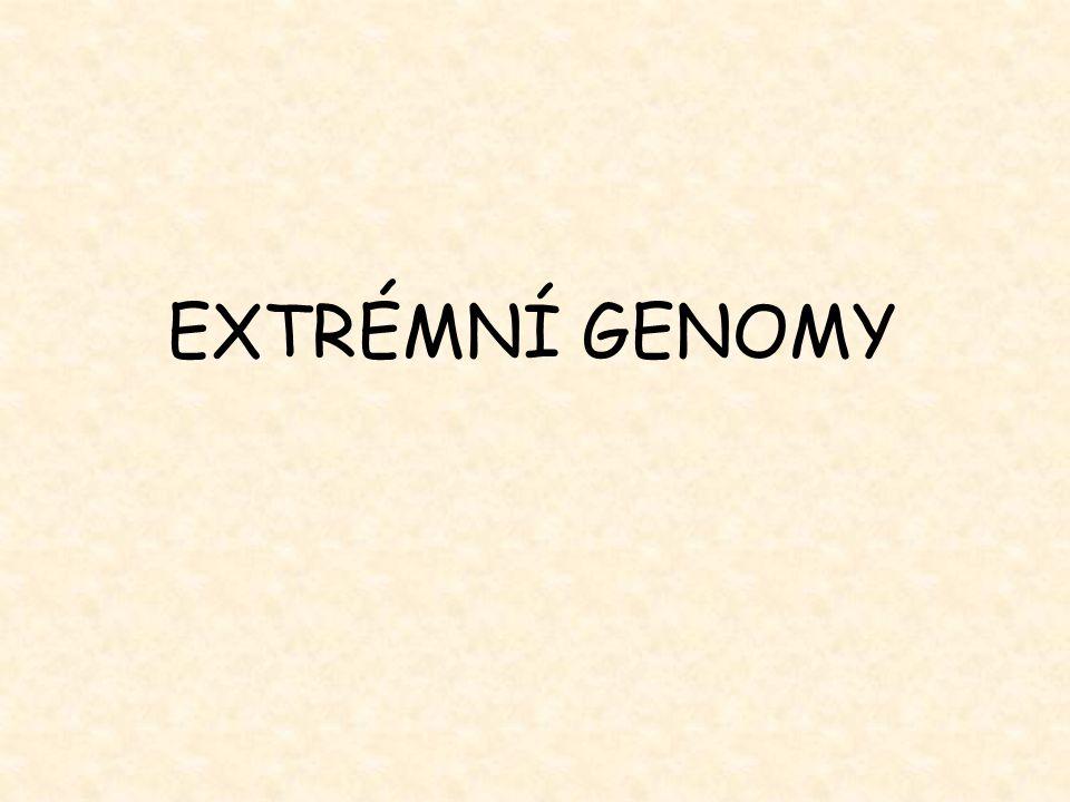 EXTRÉMNÍ GENOMY
