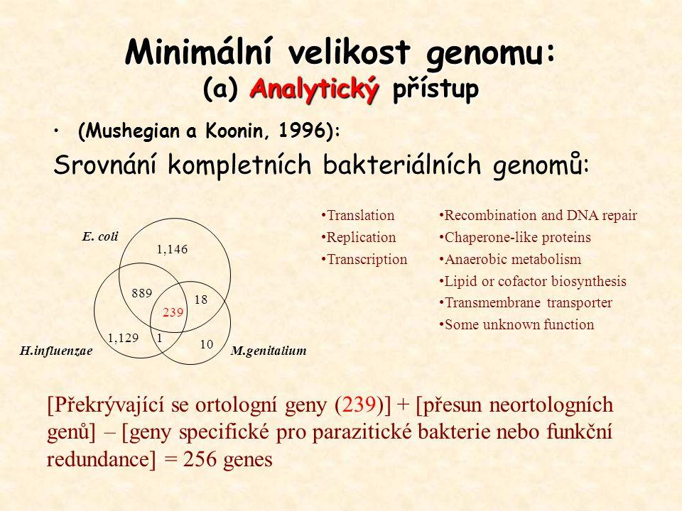 Minimální velikost genomu: (a) Analytický přístup (Mushegian a Koonin, 1996): Srovnání kompletních bakteriálních genomů: E. coli H.influenzaeM.genital