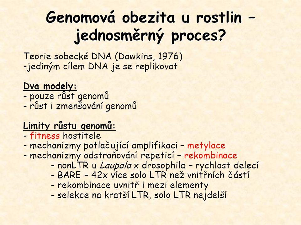 Genomová obezita u rostlin – jednosměrný proces? Teorie sobecké DNA (Dawkins, 1976) -jediným cílem DNA je se replikovat Dva modely: - pouze růst genom