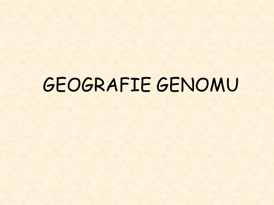 GEOGRAFIE GENOMU