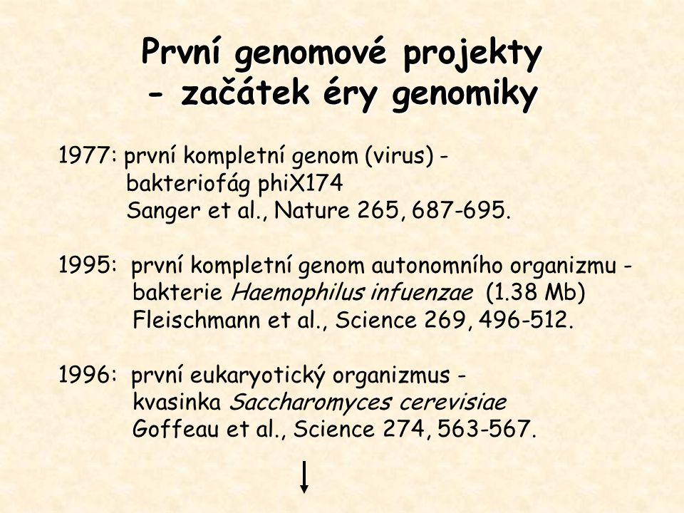 První genomové projekty - začátek éry genomiky 1977: první kompletní genom (virus) - bakteriofág phiX174 Sanger et al., Nature 265, 687-695. 1995: prv