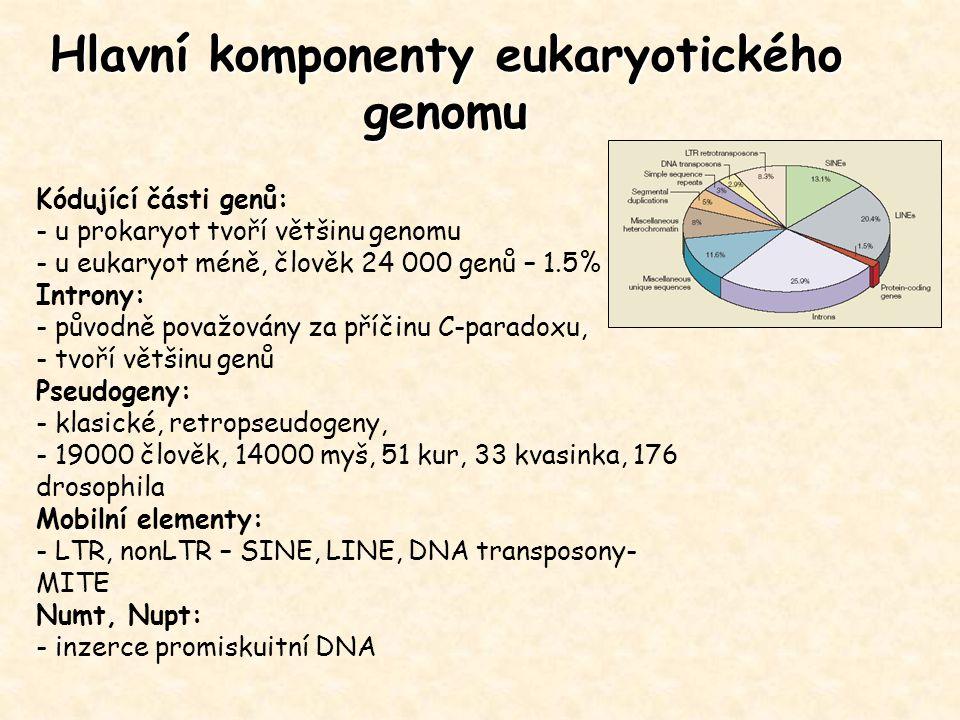 Genomové sekvenační projekty únor 2006 340 ukončených projektů: 19 archea 175 bakterie 28 eukaryota Ukončené eukaryotické genomy: protozoa: Plasmodium falciparum (23 Mb) fungi: Saccharomyces cerevisiae (12 Mb) Neurospora crassa (43 Mb) nematodes: Caenorhabditis elegans (97 Mb) insects: Drosophila melanogaster (137 Mb) Anopheles gambiae ( 278 Mb) fish: Ciona intestinalis (117 Mb) mammals: Homo sapiens (2900 Mb) Mus musculus (3300 Mb) Rattus norvegicus (2750 Mb) plants: Arabidopsis thaliana (115 Mb) Oryza sativa (420 Mb) 975 probíhajících projektů: 989 prokaryota 588 eukaryota