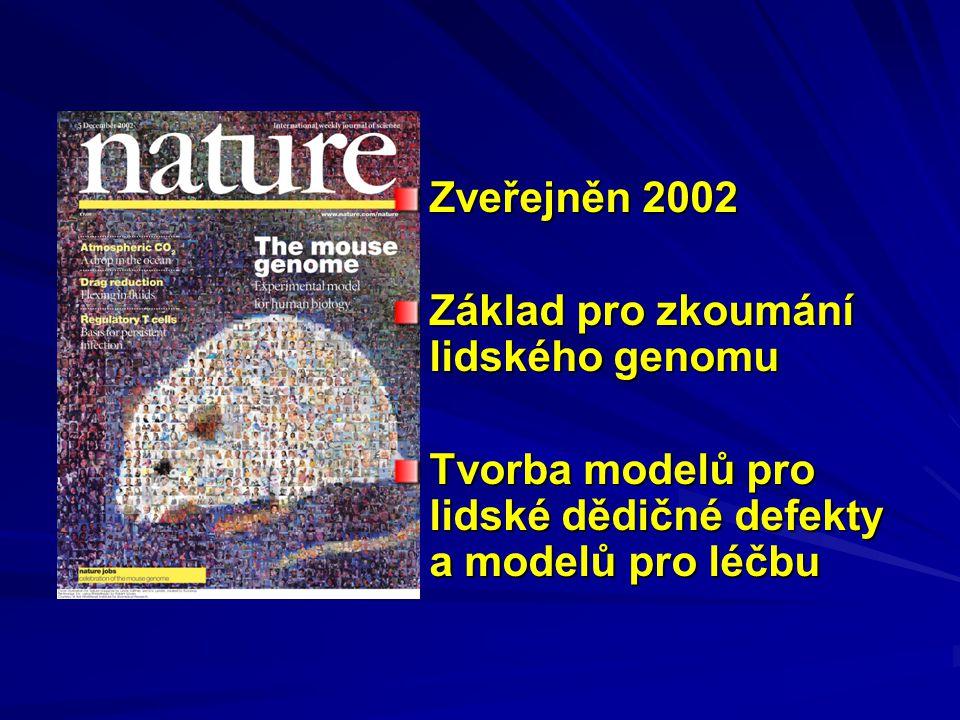 Zveřejněn 2002 Základ pro zkoumání lidského genomu Tvorba modelů pro lidské dědičné defekty a modelů pro léčbu
