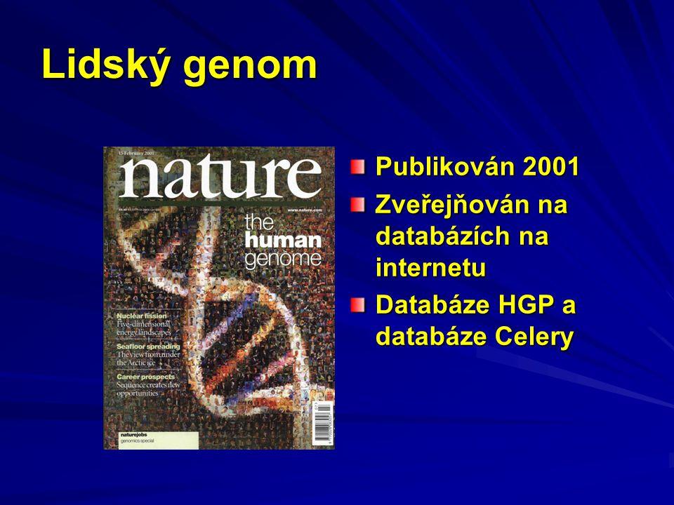 Lidský genom Publikován 2001 Zveřejňován na databázích na internetu Databáze HGP a databáze Celery