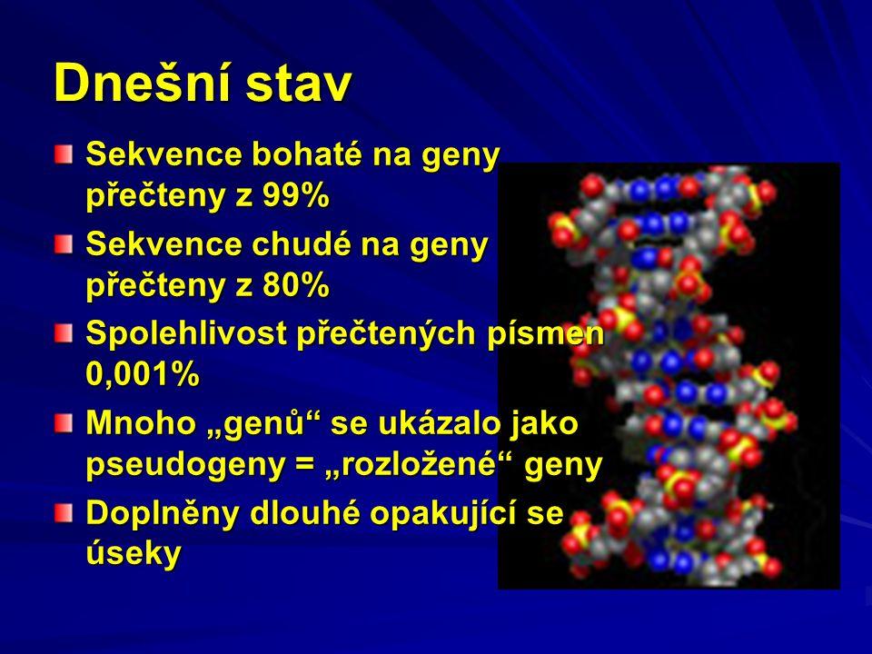 Vysoká míra heterozygotnosti CNP V dědičné informaci jednoho člověka není na chromozomálním páru prakticky nikdy stejný počet CNP.