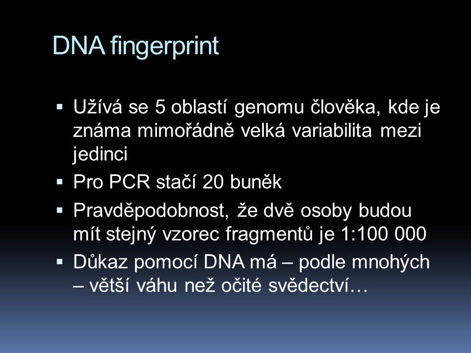 DNA fingerprint  Užívá se 5 oblastí genomu člověka, kde je známa mimořádně velká variabilita mezi jedinci  Pro PCR stačí 20 buněk  Pravděpodobnost,