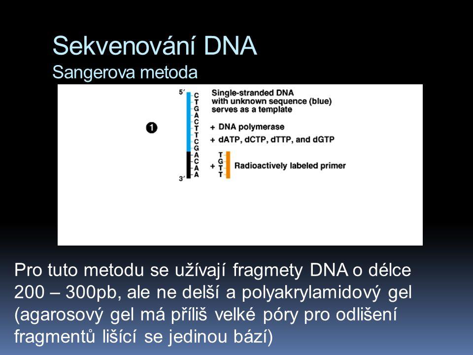 Sekvenování DNA Sangerova metoda Pro tuto metodu se užívají fragmety DNA o délce 200 – 300pb, ale ne delší a polyakrylamidový gel (agarosový gel má př